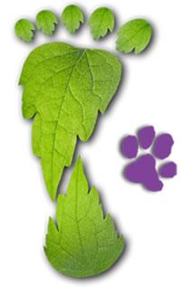 foot-leaf